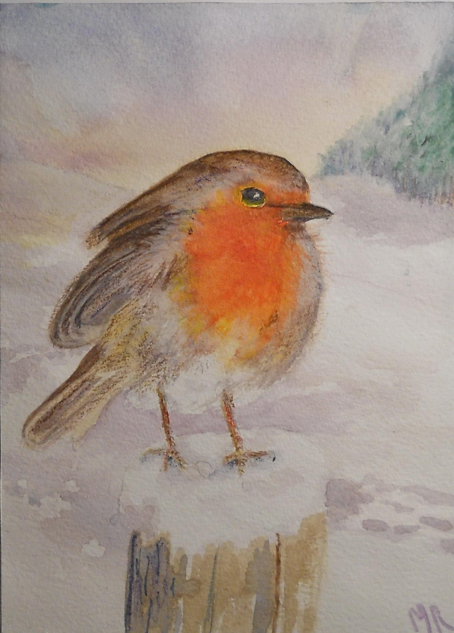 Robin Christmas Card ©Marianne E Richards